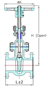 Globe Valve Specification 2